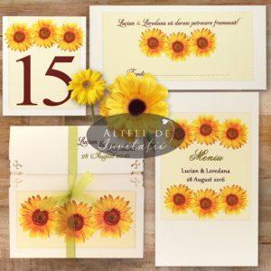 set-complet-floarea-soarelui