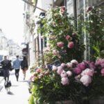 florarie-online-bucuresti (5)